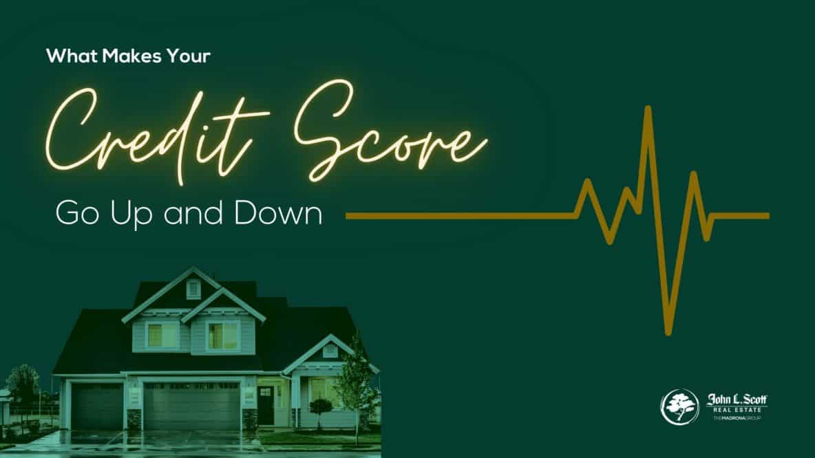 What makes your credit score go up and down